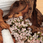 Get Sleepy the Natural Way: Sleep Aids from Mother Nature