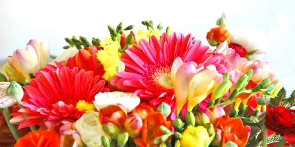 January Birth Flowers