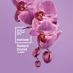 6 Reasons to Love Pantone's Color of the Year