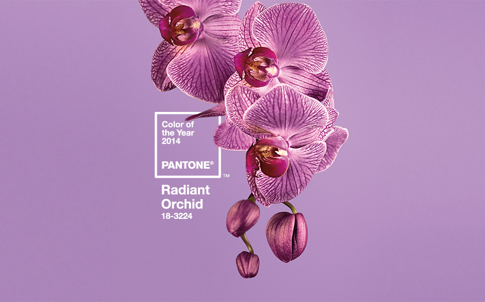 Pantone® Color of the Year 2014