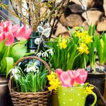8 Tips for DIY Floral Arrangements