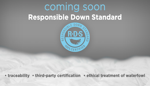 RDS_banner_590x340