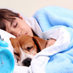 Pros vs. Cons of Sleeping With Your Pet